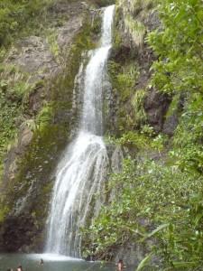 Der wunderschöne Kitekite Wasserfall im Urwald bei Piha Beach
