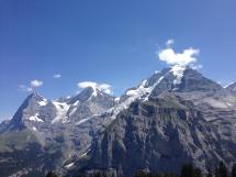 Blick vom Allmendhubel auf Jungfrau, Mönch und Eiger